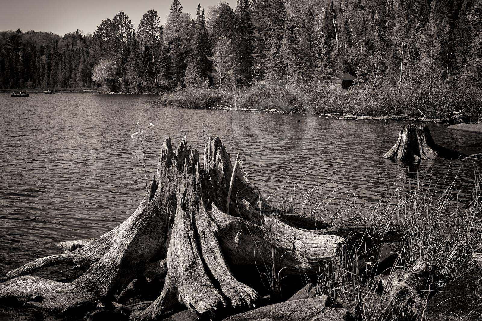 THOMSONS-CANOE-LAKE