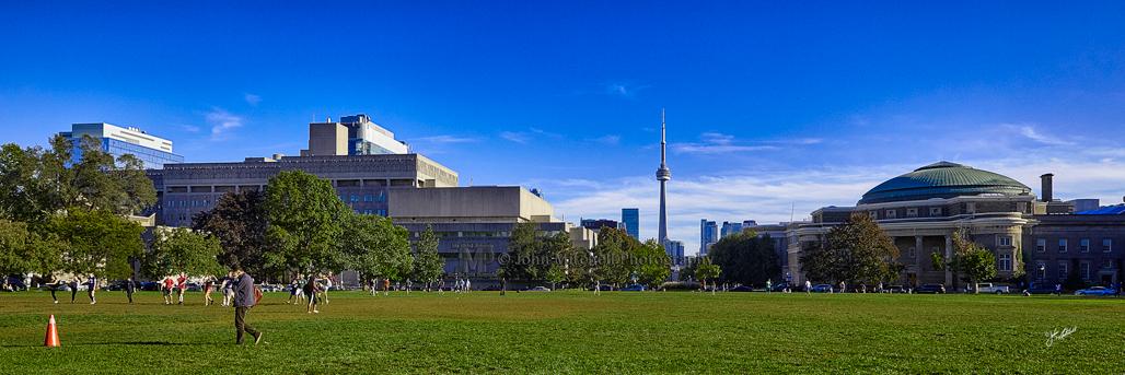 Toronto from University of Toronto