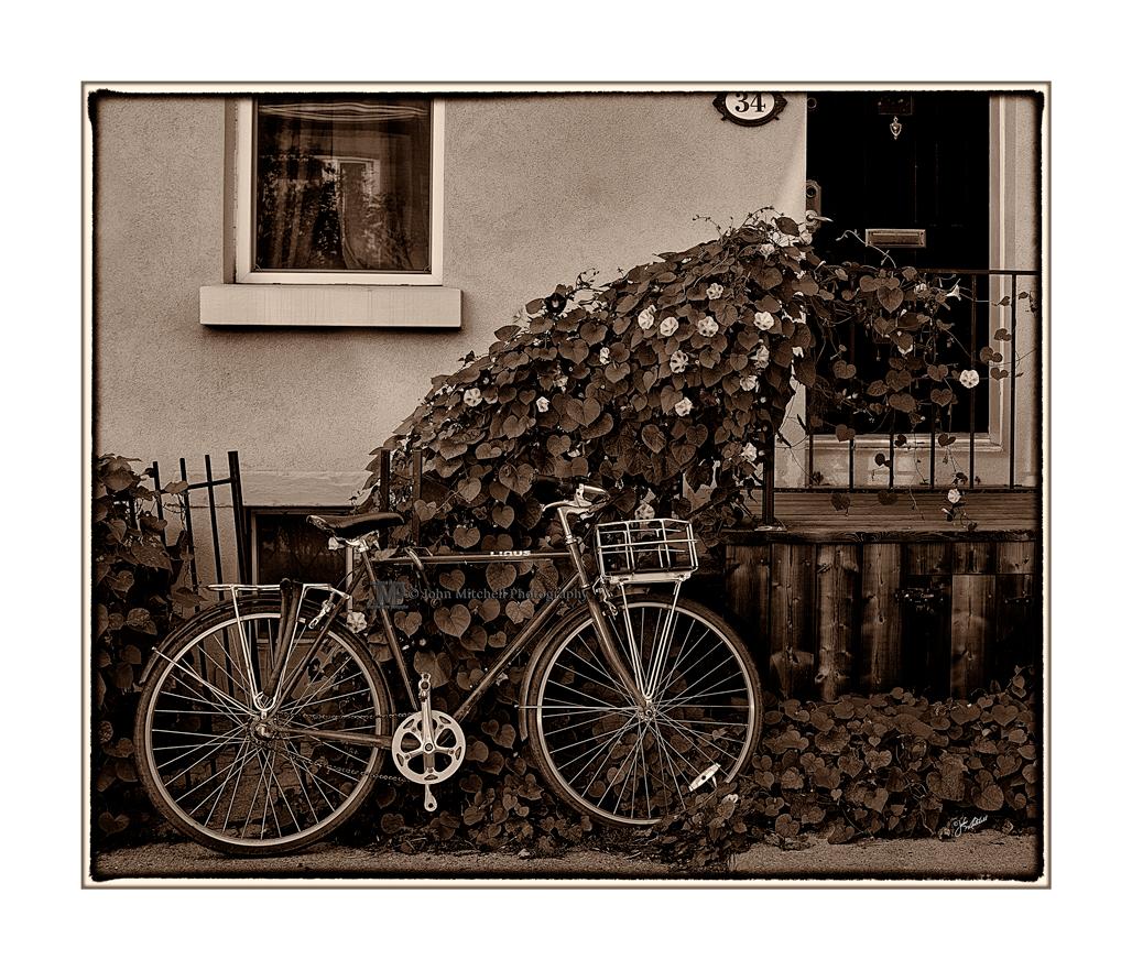 Decoration? Transportation? Both!