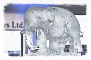 16th Annual Elephant Waltz