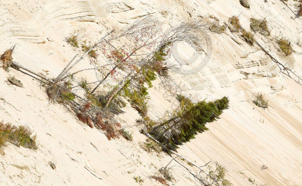 ARROWHEAD-SAND-DUNES-1024x632.jpg